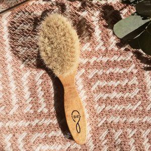 brosse à cheveux bébé 1845