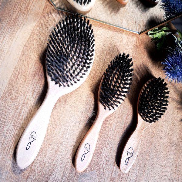 brosse à cheveux bois et poils de sanglier 1845